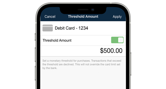 Debit Card Control - Establish Spending Limits